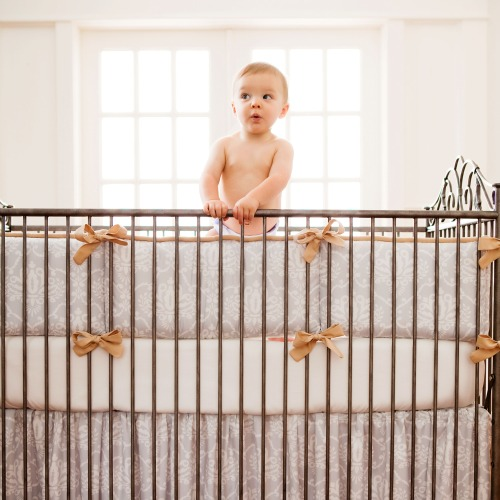 Carousel Gray Damask Crib Bedding Set