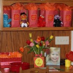 Cami's Elmo Inspired 2nd Birthday Party