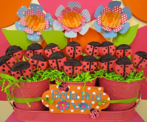 Lady Bug Birthday Party