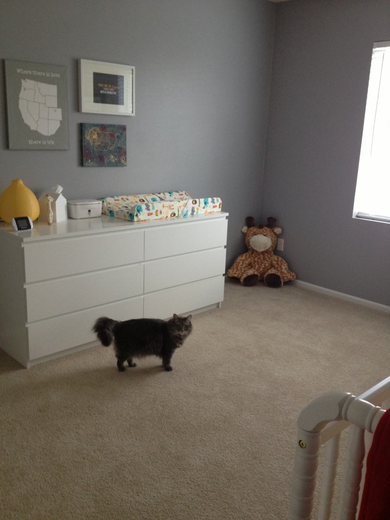 Changing table and big stuffed giraffe (and kitten sister Xerox)