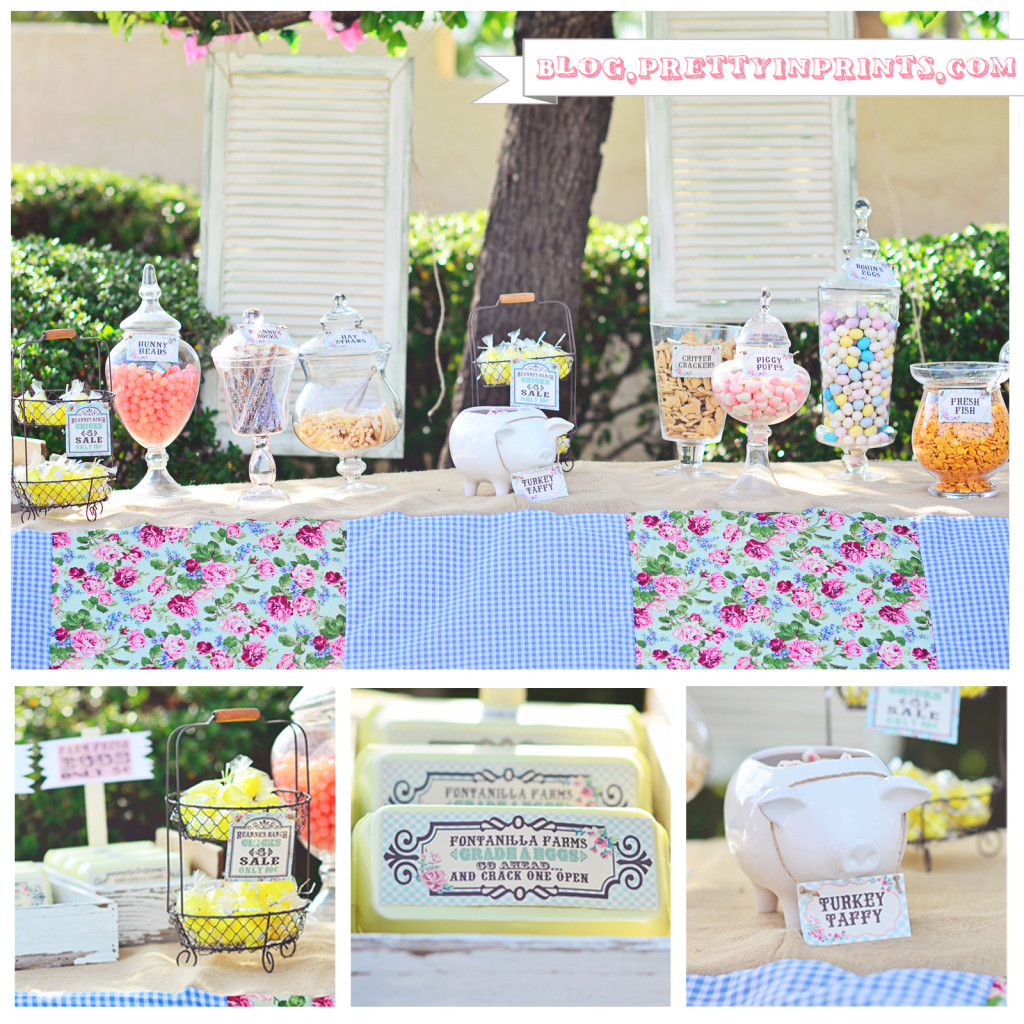 Shabby Farmhouse Party
