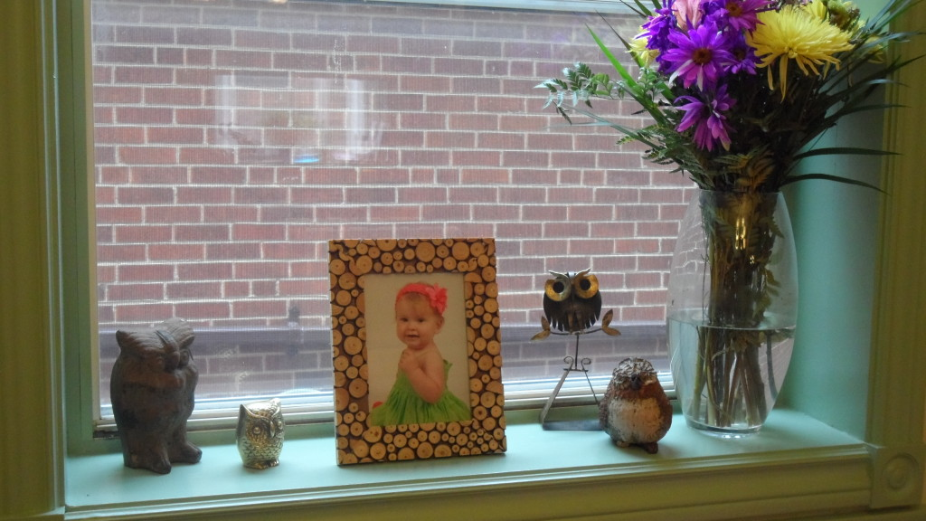 Girl Owl First Birthday Party Framed Photo