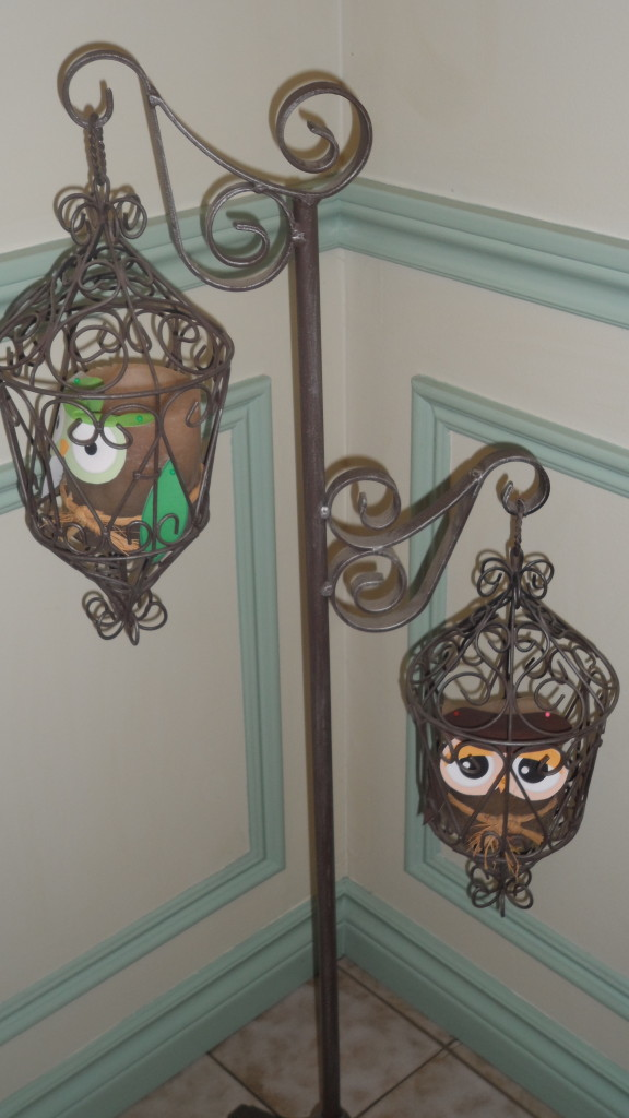 Girl Owl First Birthday Party Lanterns