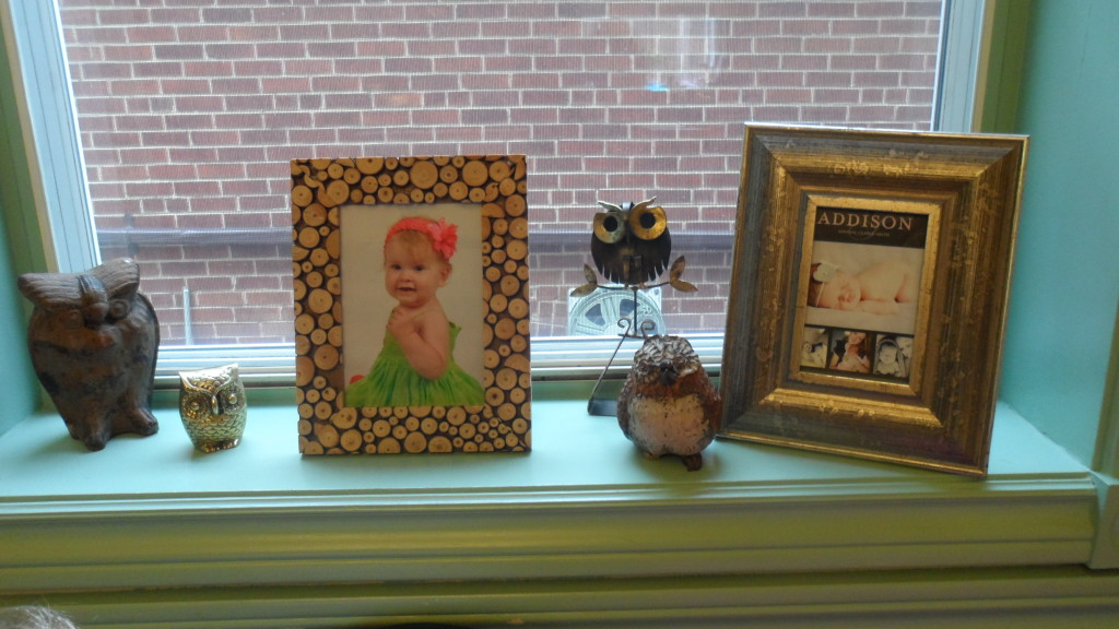 Girl Owl First Birthday Party Framed Photos