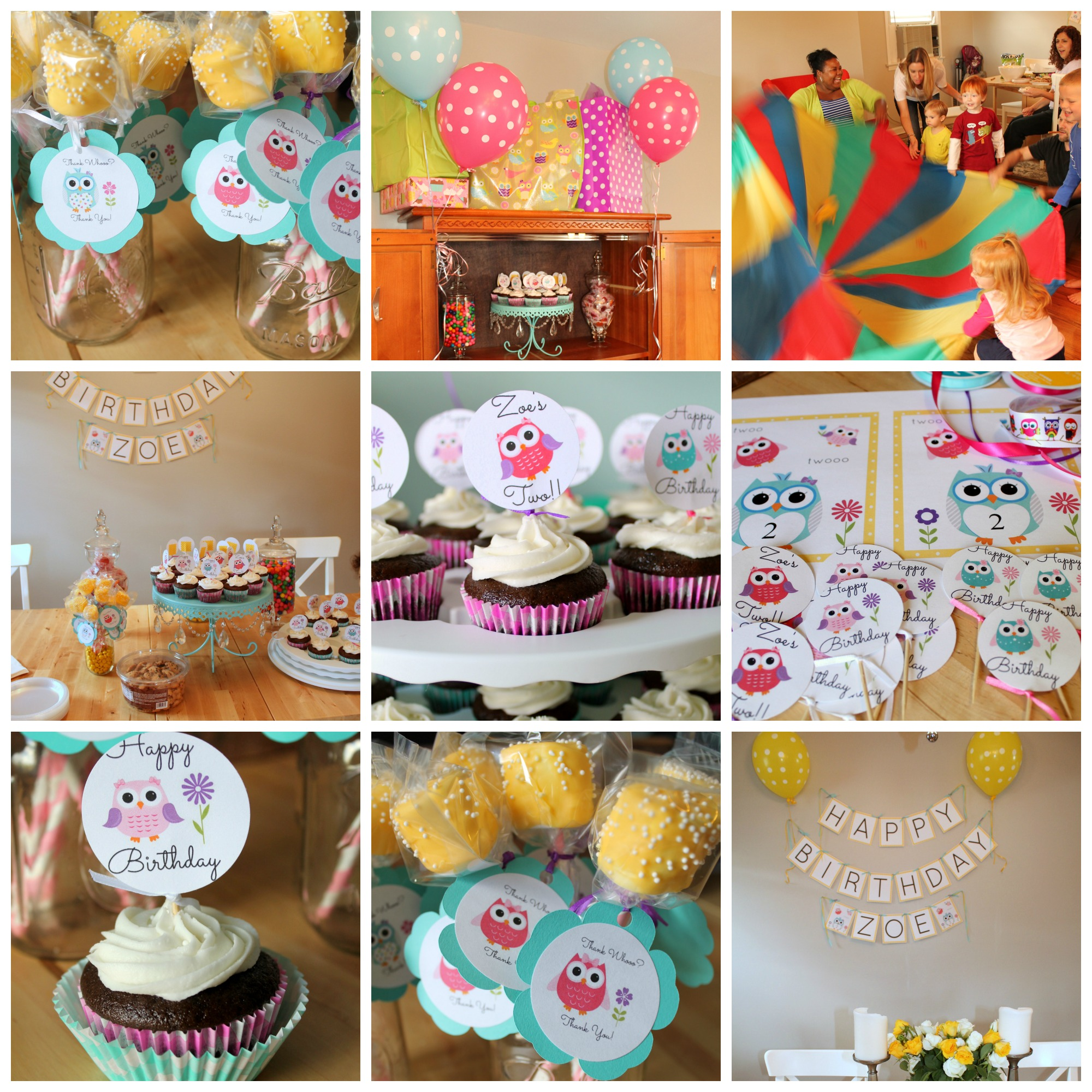 Owl Themed 2nd Birthday Party Collage
