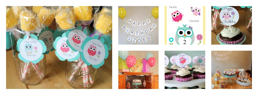 Owl Themed 2nd Birthday Party Owl Collage