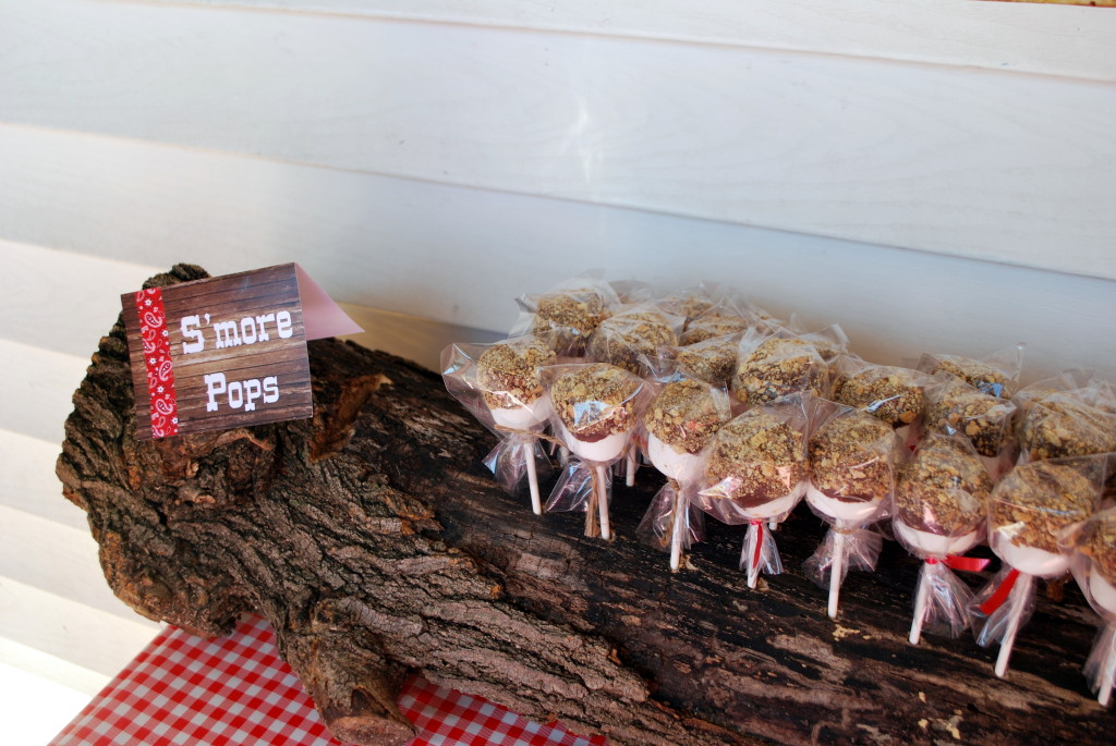 S'mores Pops on Display in Tree Trunk Stand