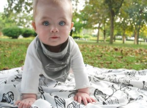 Bamboo Blankie and Bibs Bandana from Nest Designs