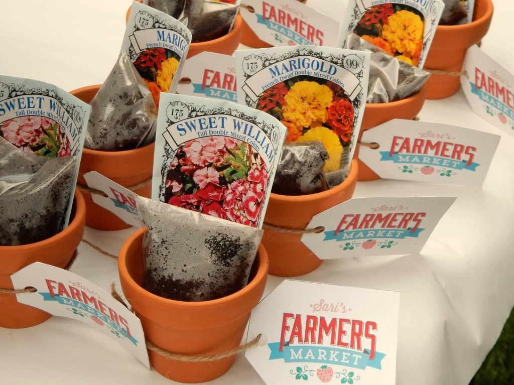 Terra Cotta Pots with Soil and Seeds for Farmers Market Party Favors