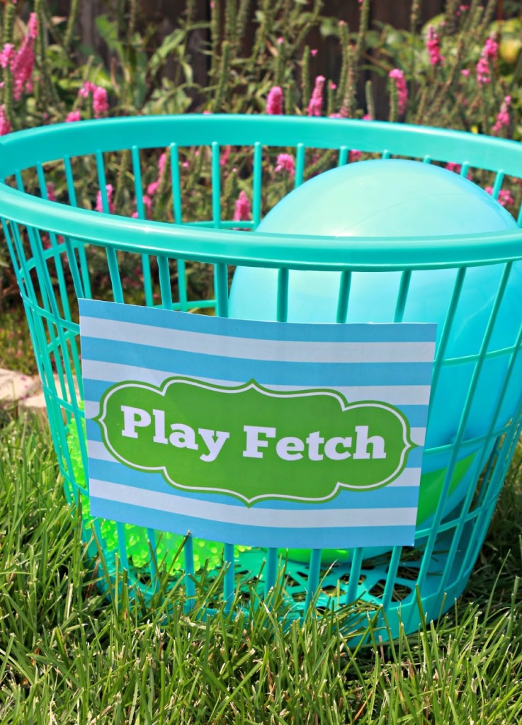 Play Fetch Puppy Birthday Party Activities
