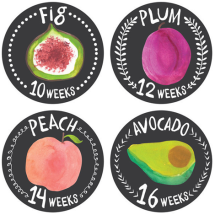 Pregnancy Bump Stickers