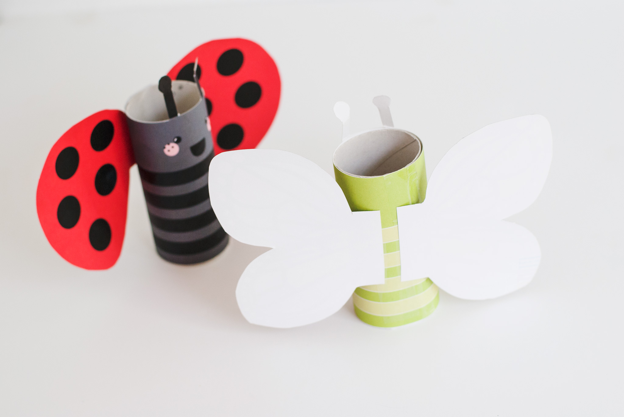 DIY Butterfly and Ladybug Kids Craft