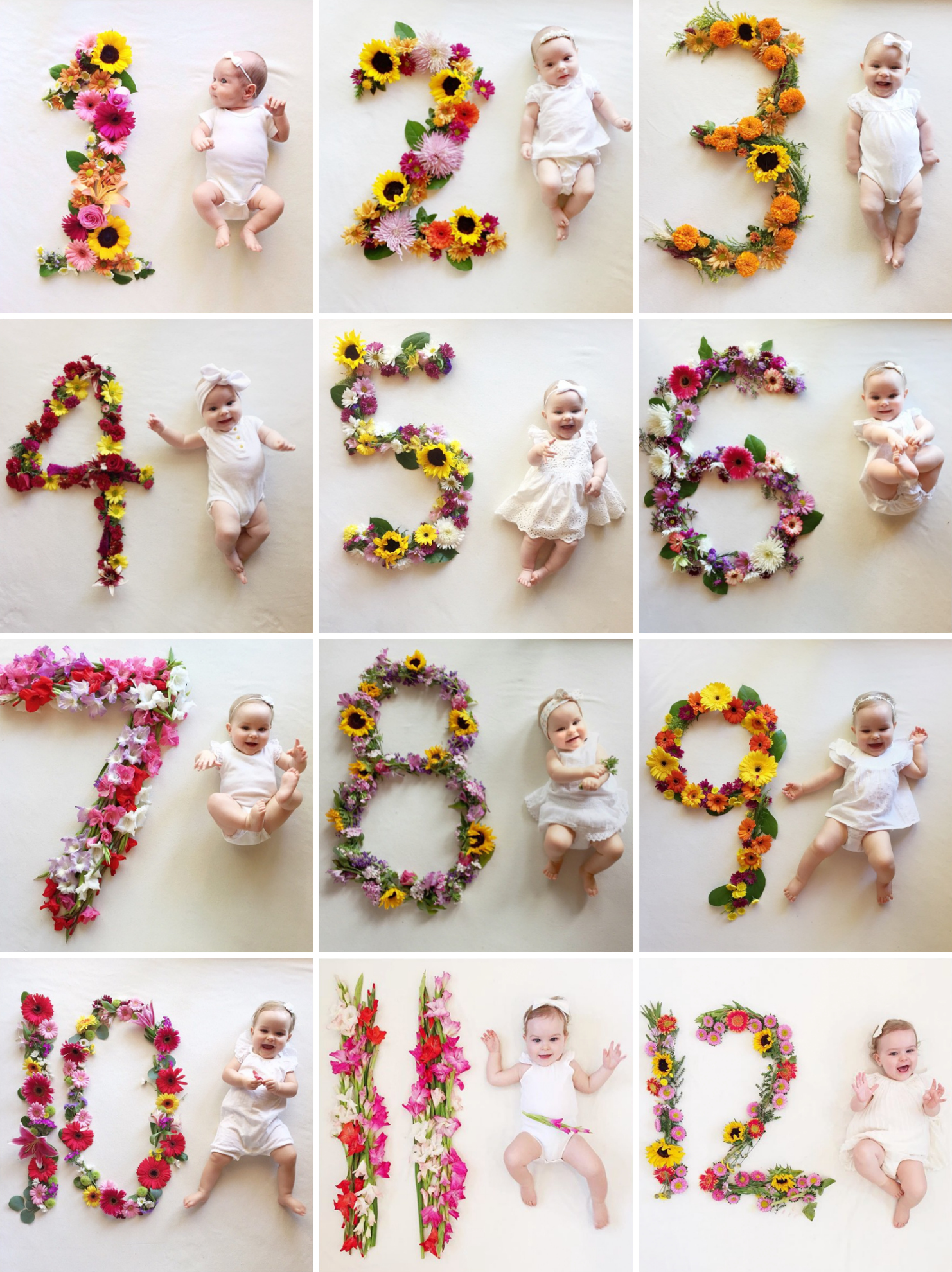 Flower Number Monthly Baby Photos by Lauren Bowyer