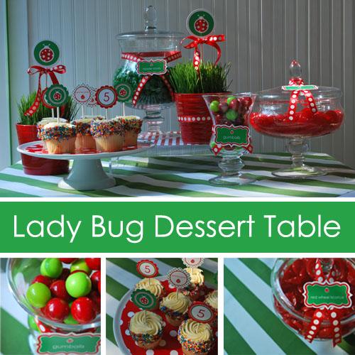 Lady Bug Birthday Party