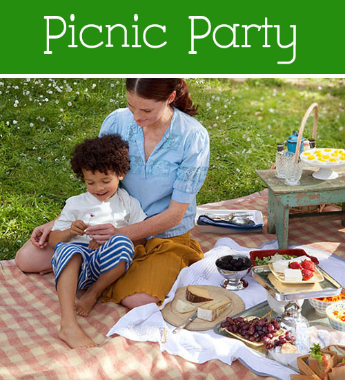 Picnic Party Ideas for Kids
