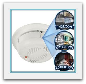 Smoke detector nanny cam