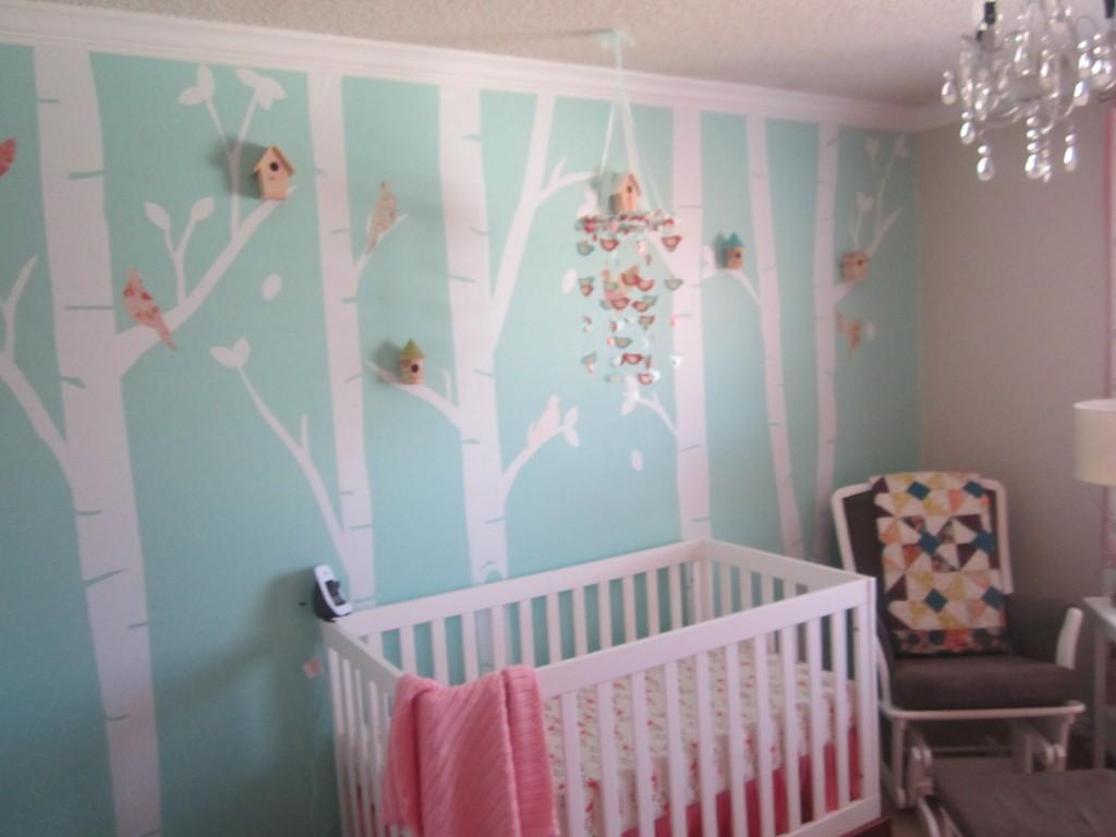 Baby Girl Whimisical Birds Nursery Project Nursery