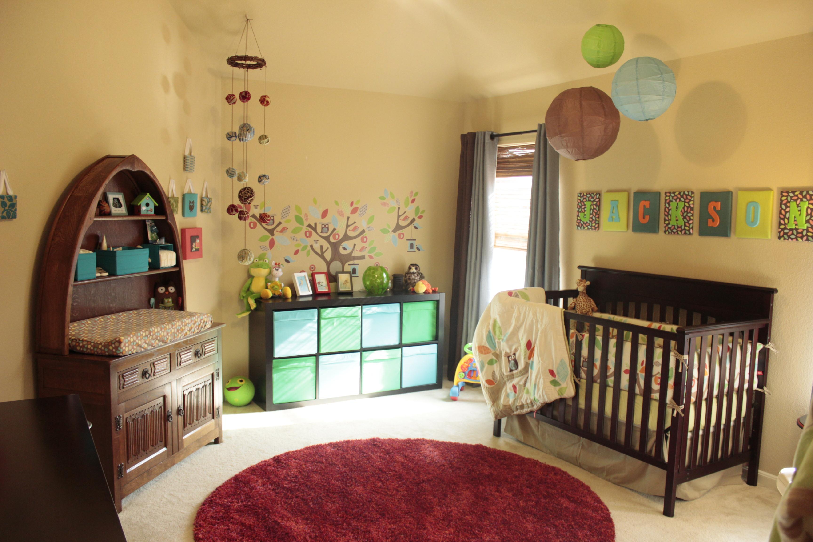 Boy Owl Nursery Room View