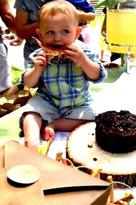 Dinosaur 1st Birthday Party Cake