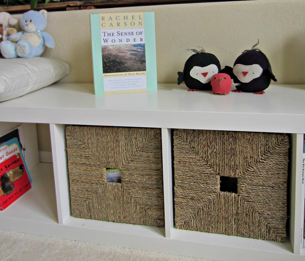 Immersion in Nature Nursery Bookshelf