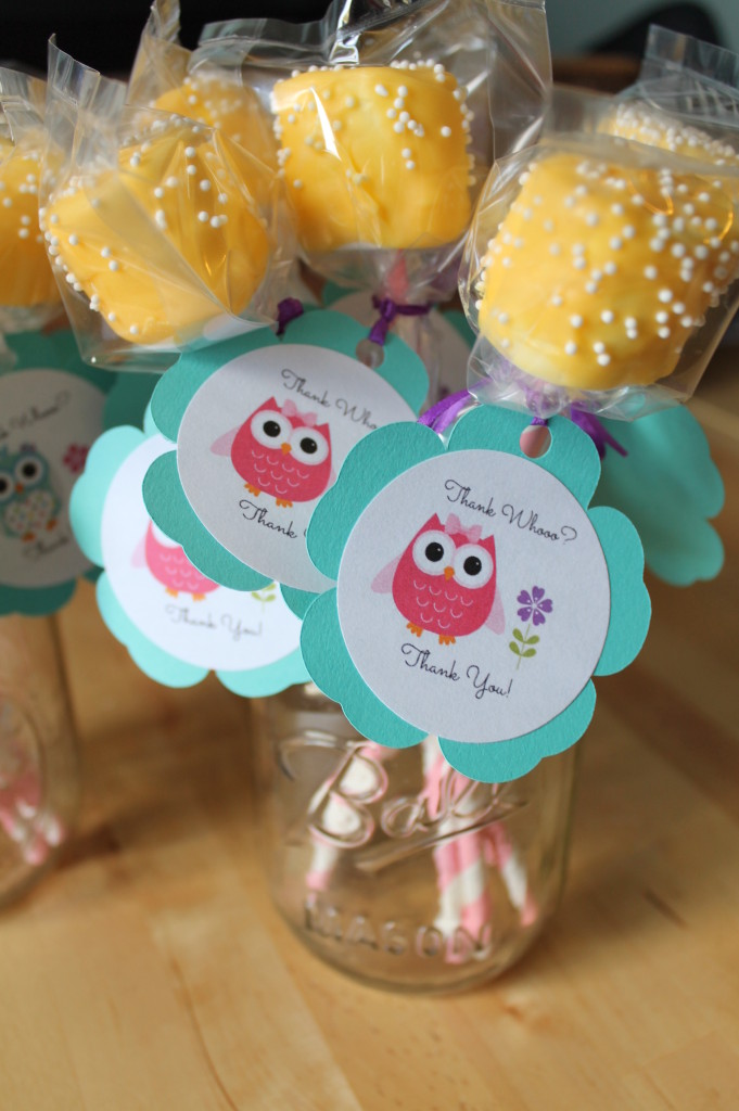Owl Themed 2nd Birthday Party