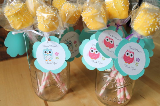 Owl Themed Birthday Party Marshmallow Pops - Project Nursery