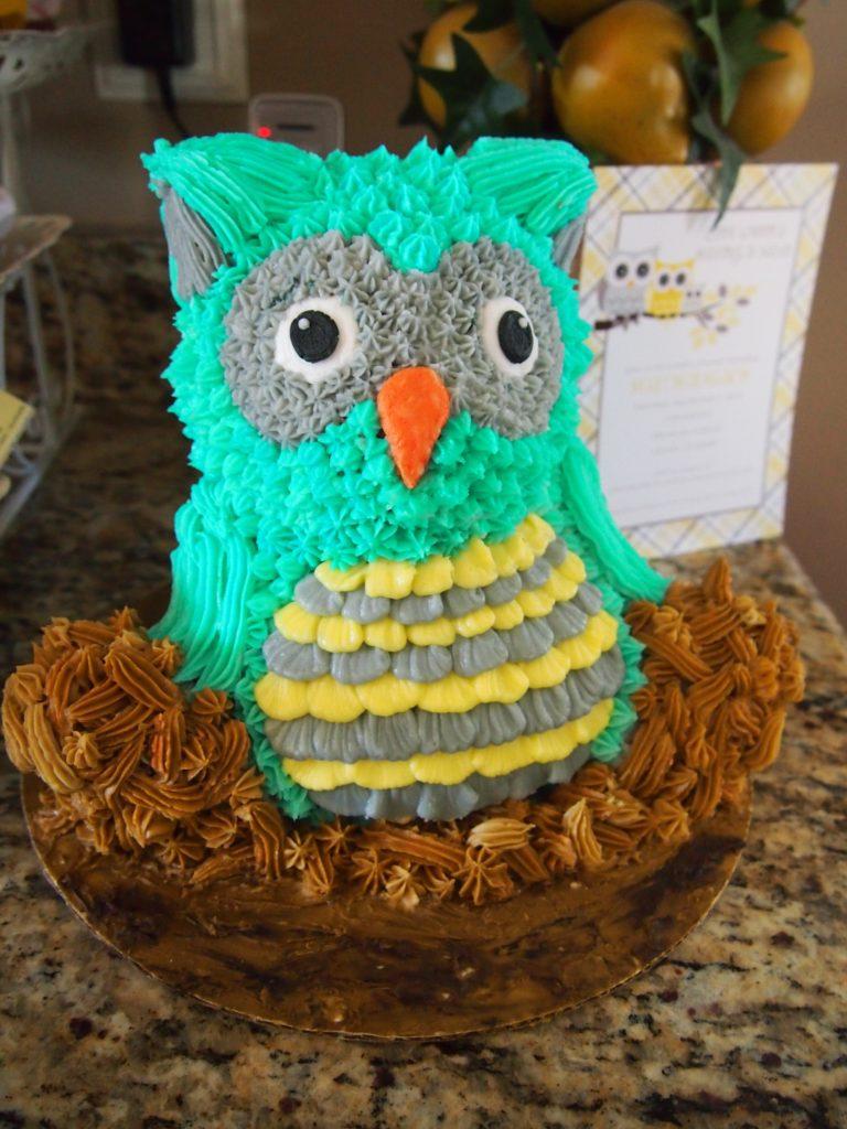 Turquoise Owl Cake