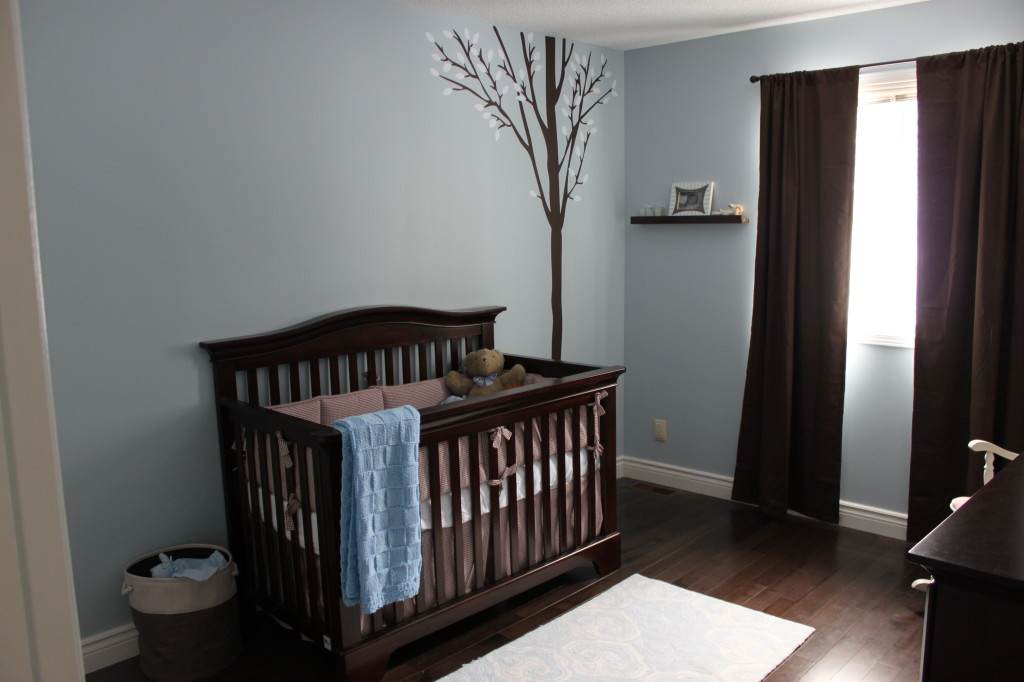 Cameron's Blue and Brown Nursery - Project Nursery