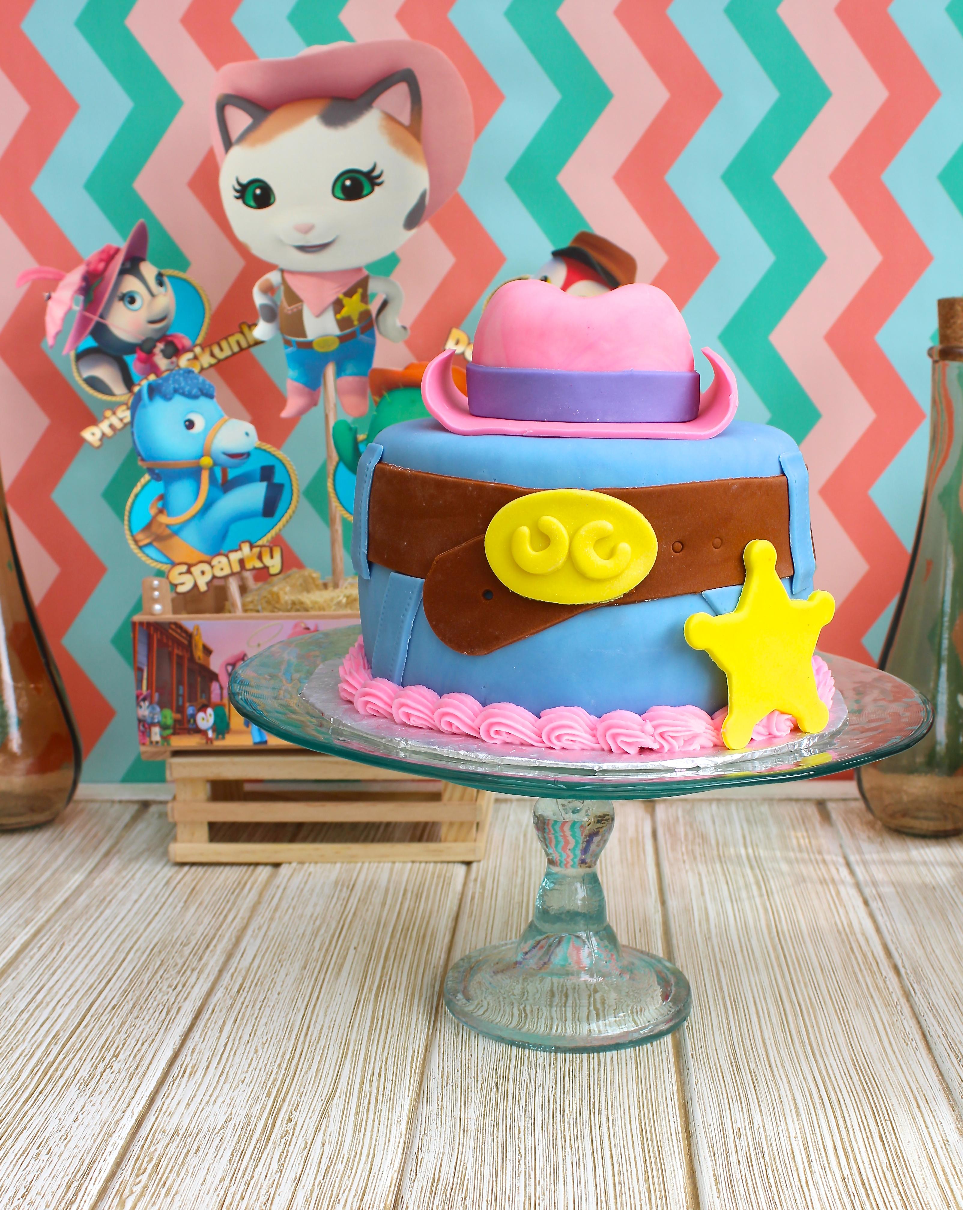 Sheriff Callie Cake Ideas