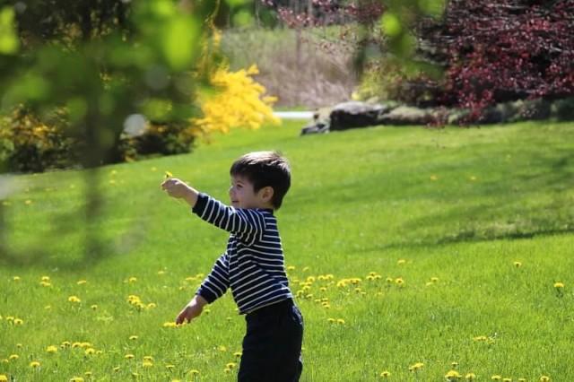Boy playing in grass