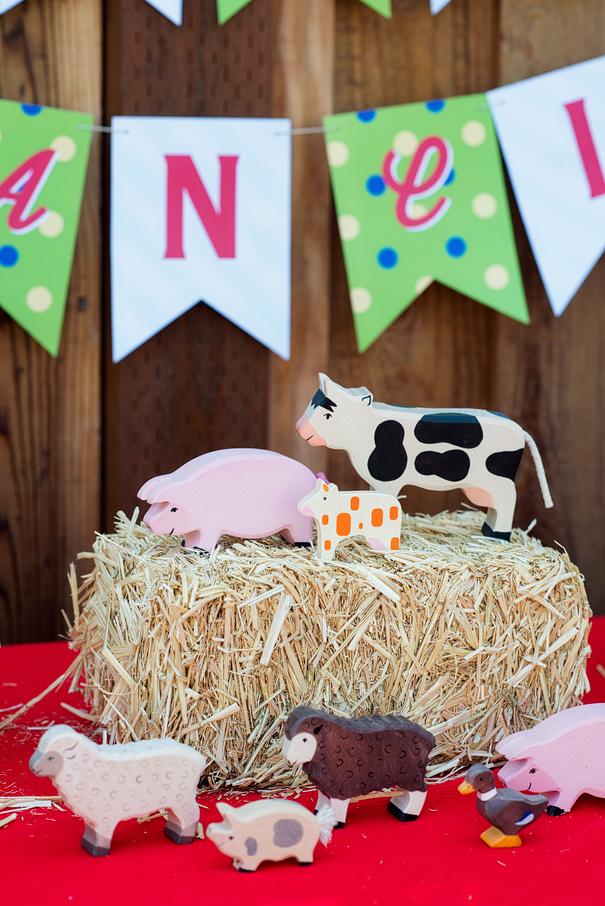 Barnyard Birthday Party Decor