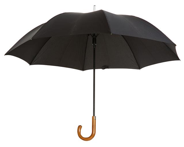 Paddington Umbrella