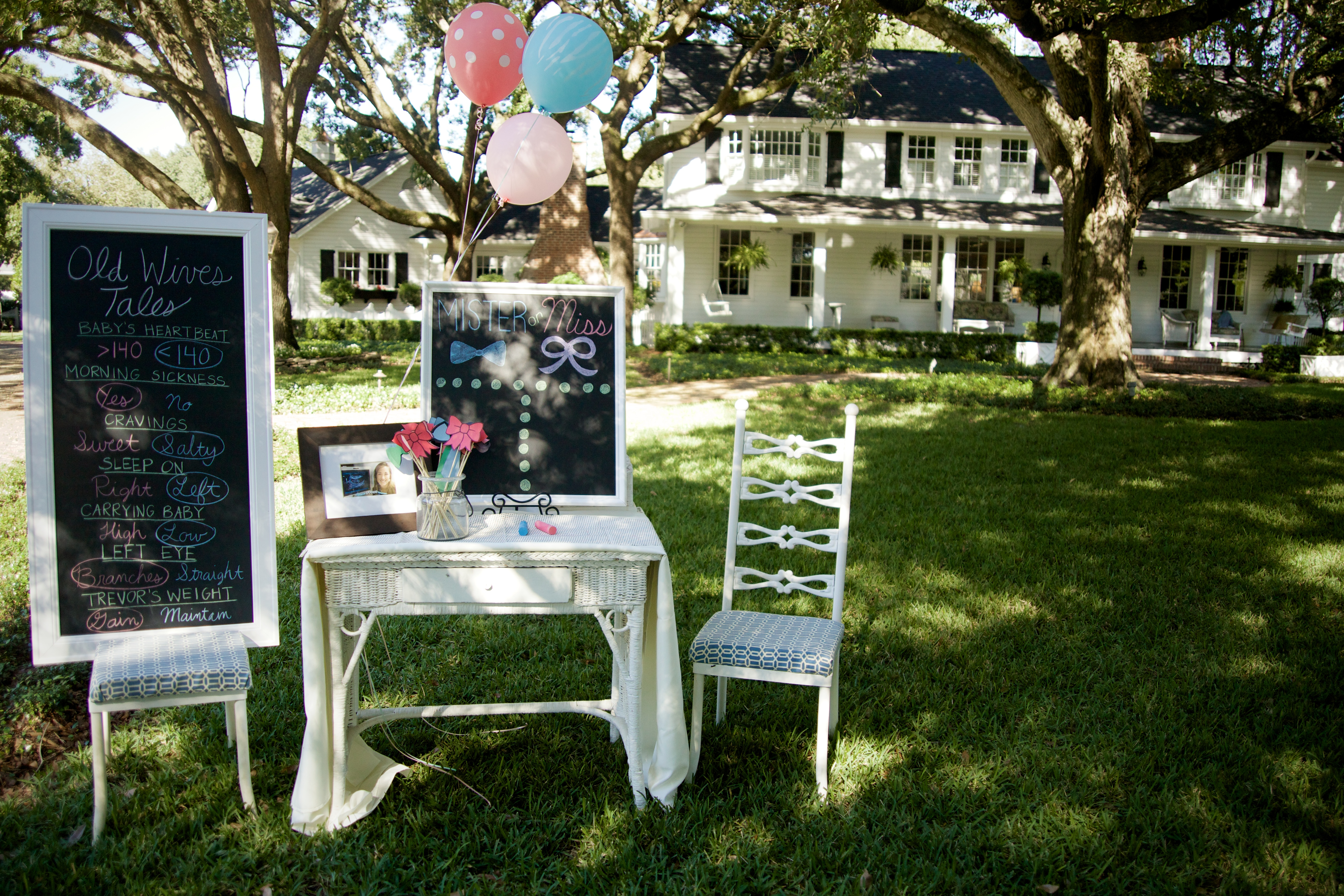 Gender Reveal Party On The Lawn Project Nursery