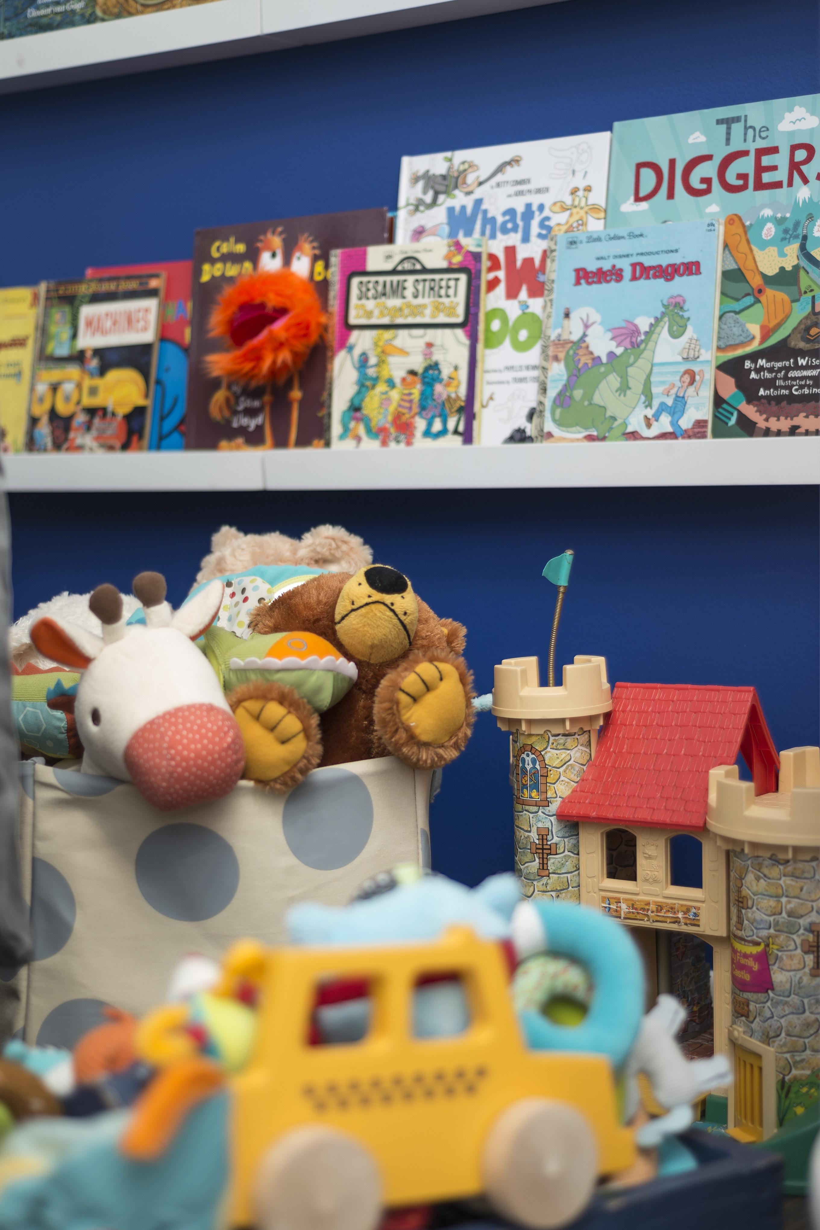 Nursery Book Shelves Wall Library