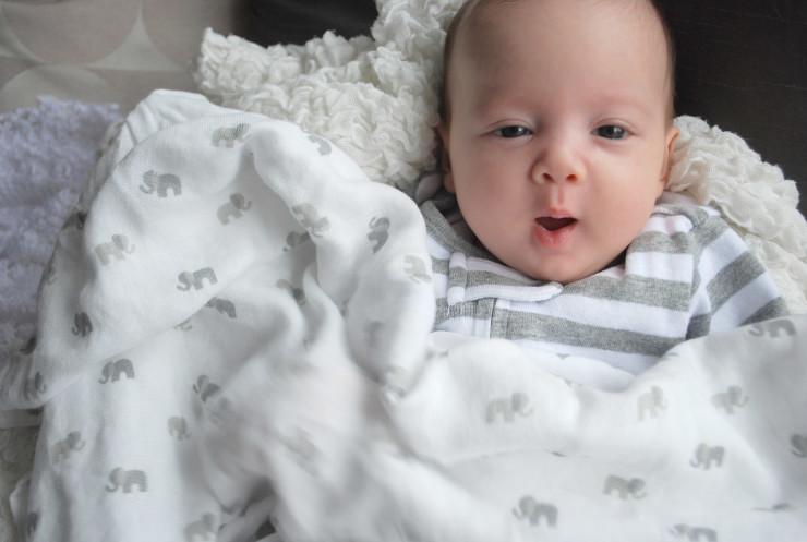 Elephant Bamboo Blanket from Nest Designs