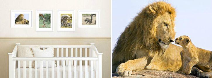 Baby Animal Prints by Suzi