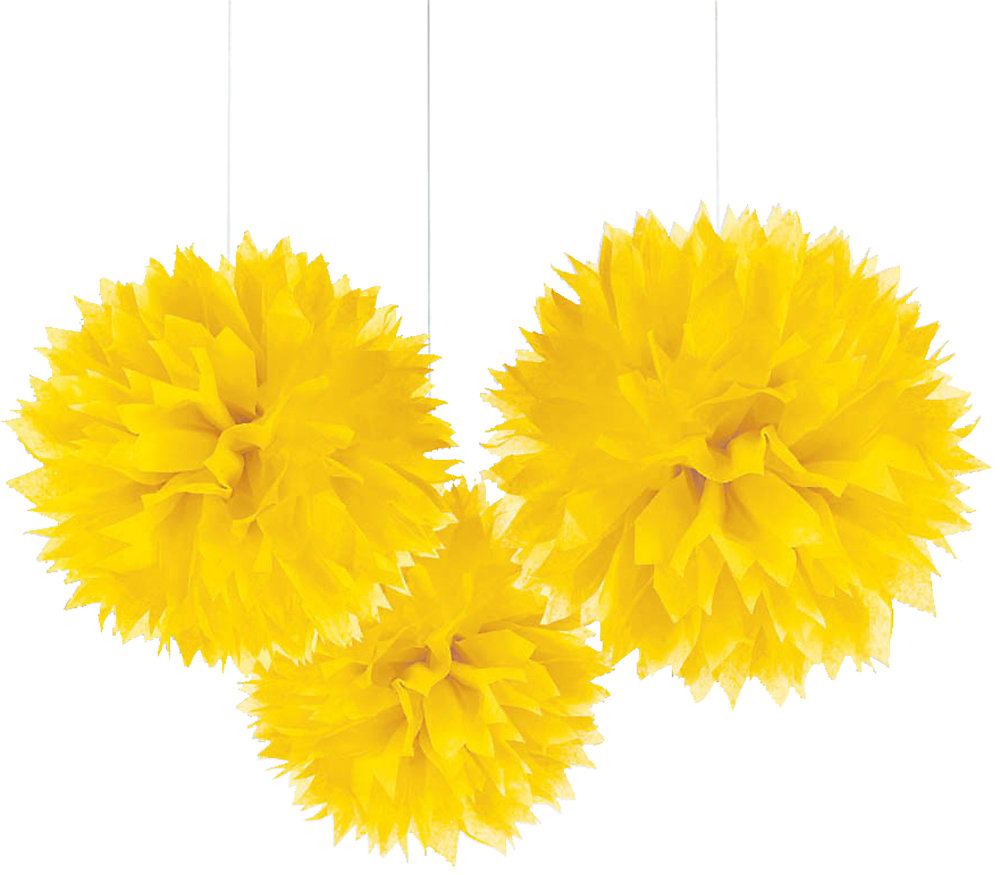 Tissue Paper Pom Poms from Big Dot of Happiness