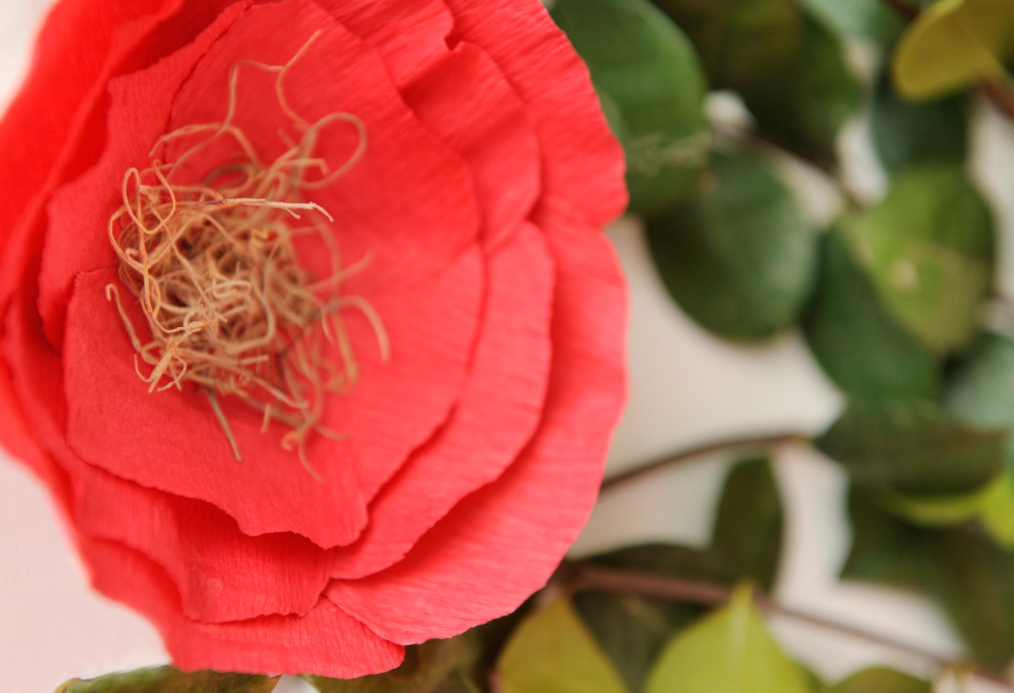 Crepe Paper Flower Party Decor