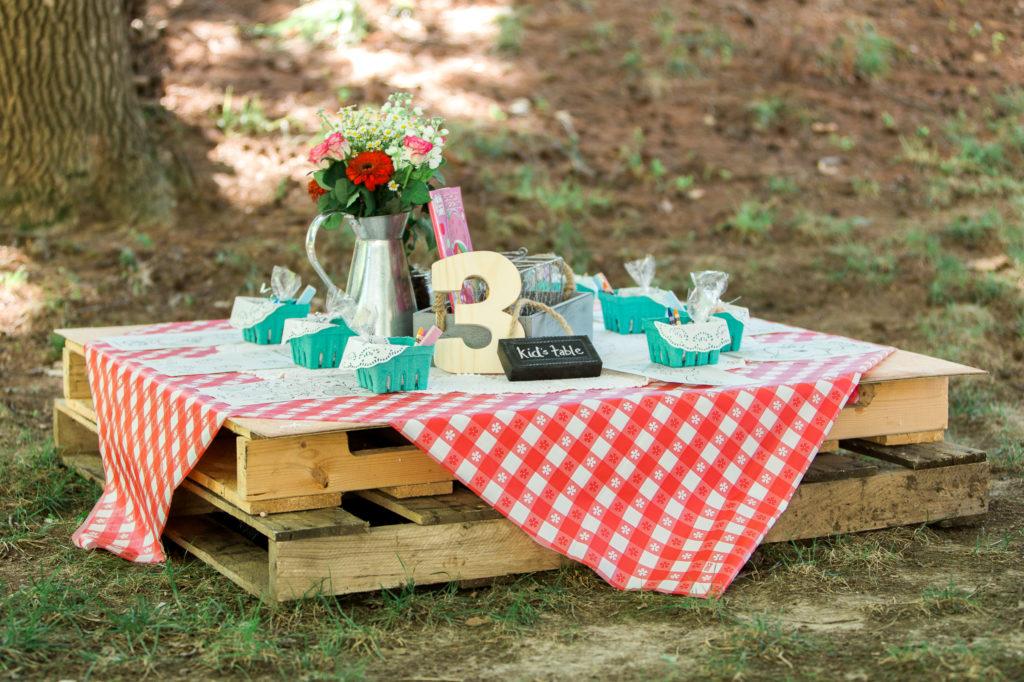 Charlottes Backyard Strawberry Picnic Party