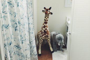 Laundry Room to Nursery Transformation