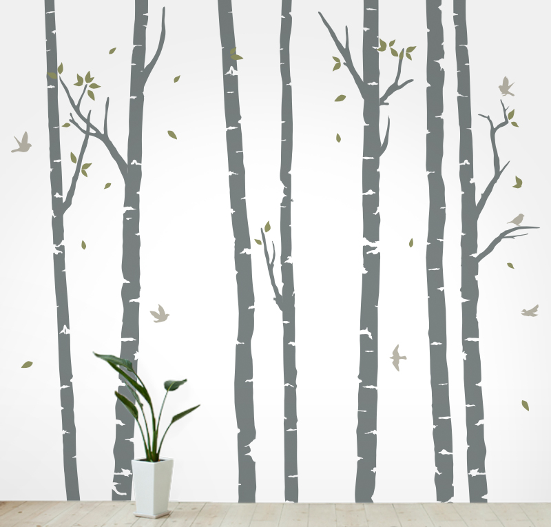 Birch Trees Wall Decals from Wallums