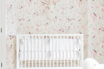 Vintagey Bird Wallpaper Nursery