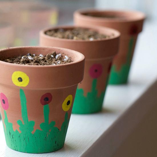 Kids Windowsill Garden Project