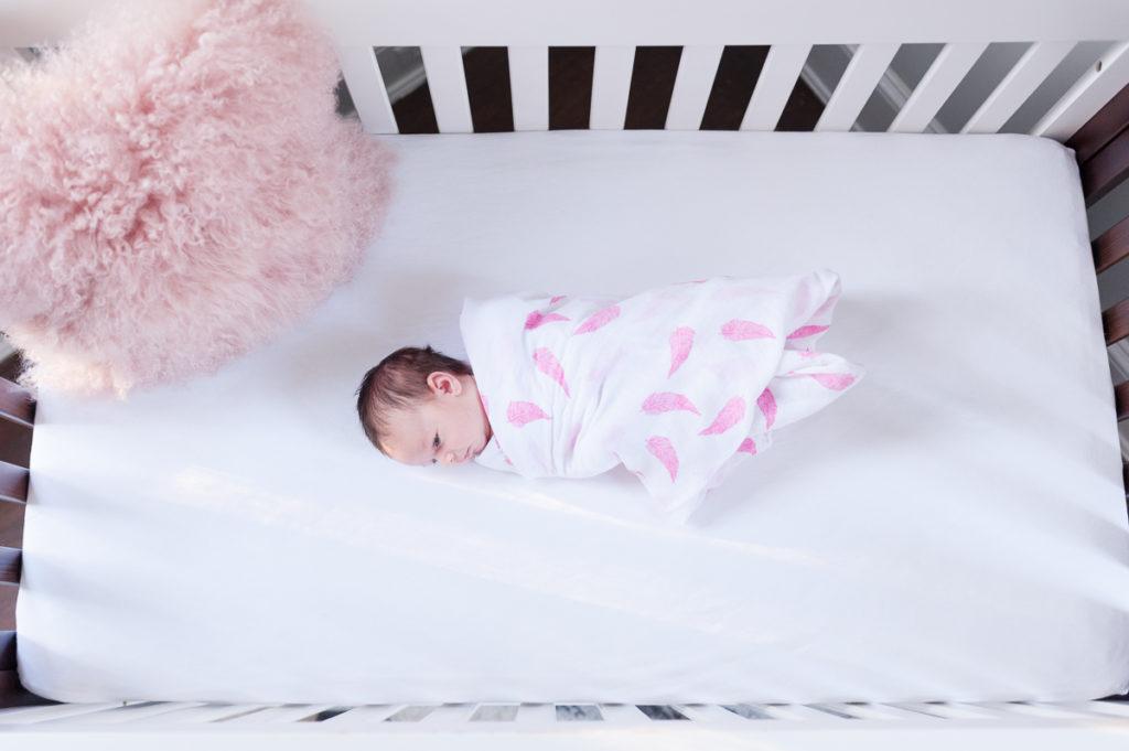 dc newborn photographer stefanie harrington