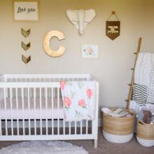 photo of Carters Bits of Blush Nursery