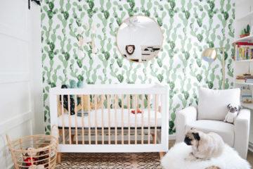 Cactus Boho Modern Nursery