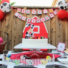 photo of Barnyard Party – Cowgirl Turns 2
