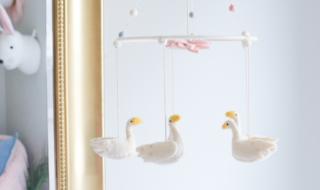 Swan Inspired Nursery