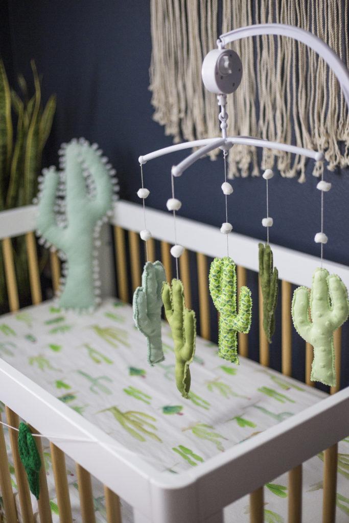 Cactus Nursery Project Nursery