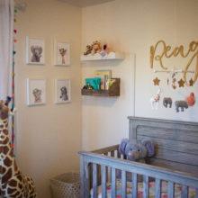 photo of Colorful and Girly Safari Nursery
